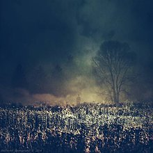 Obrazy - Location:Silence (Part.III.) - 4825013_