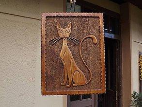 Dekorácie - Obraz Mačka - 5187052_