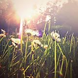 Fotografie - zachytit sluneční paprsky - 5468667_
