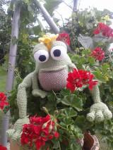 - žabí princ - 5481585_