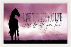 - (3368ft 3) Tapeta na stenu, Love The..., kôň - 5596646_