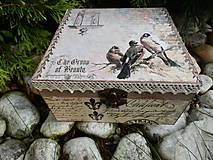 Krabičky - vtáčiky a klietka - 5606563_