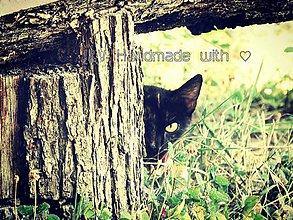 Fotografie - Kuk... - 5607806_