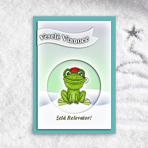 Žabka v snehu - vianočná pohľadnica 1