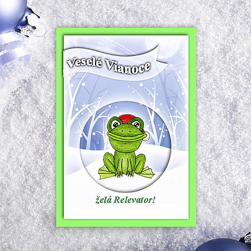 Žabka v snehu - vianočná pohľadnica 3