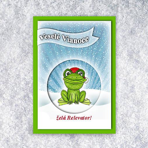 Žabka v snehu - vianočná pohľadnica 4