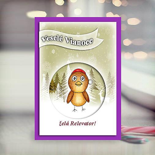 Vtáčik v snehu - vianočná pohľadnica 5