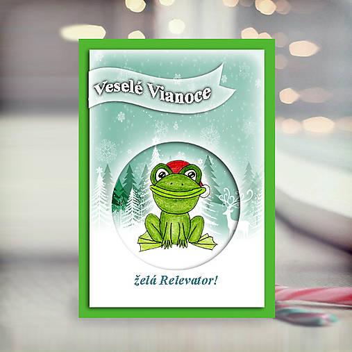 Žabka v snehu - vianočná pohľadnica 5