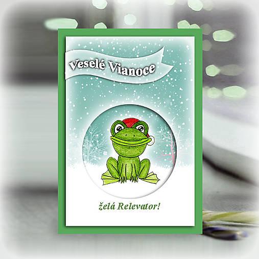 Žabka v snehu - vianočná pohľadnica 6