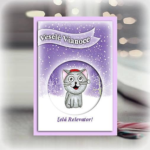 Mačička v snehu - vianočná pohľadnica 6