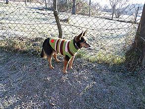 Pre zvieratká - pulóvrik pre psíka :) - 6225562_