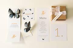 Papiernictvo - Svadobné oznámenie / Na krídlach motýľov - 6471674_